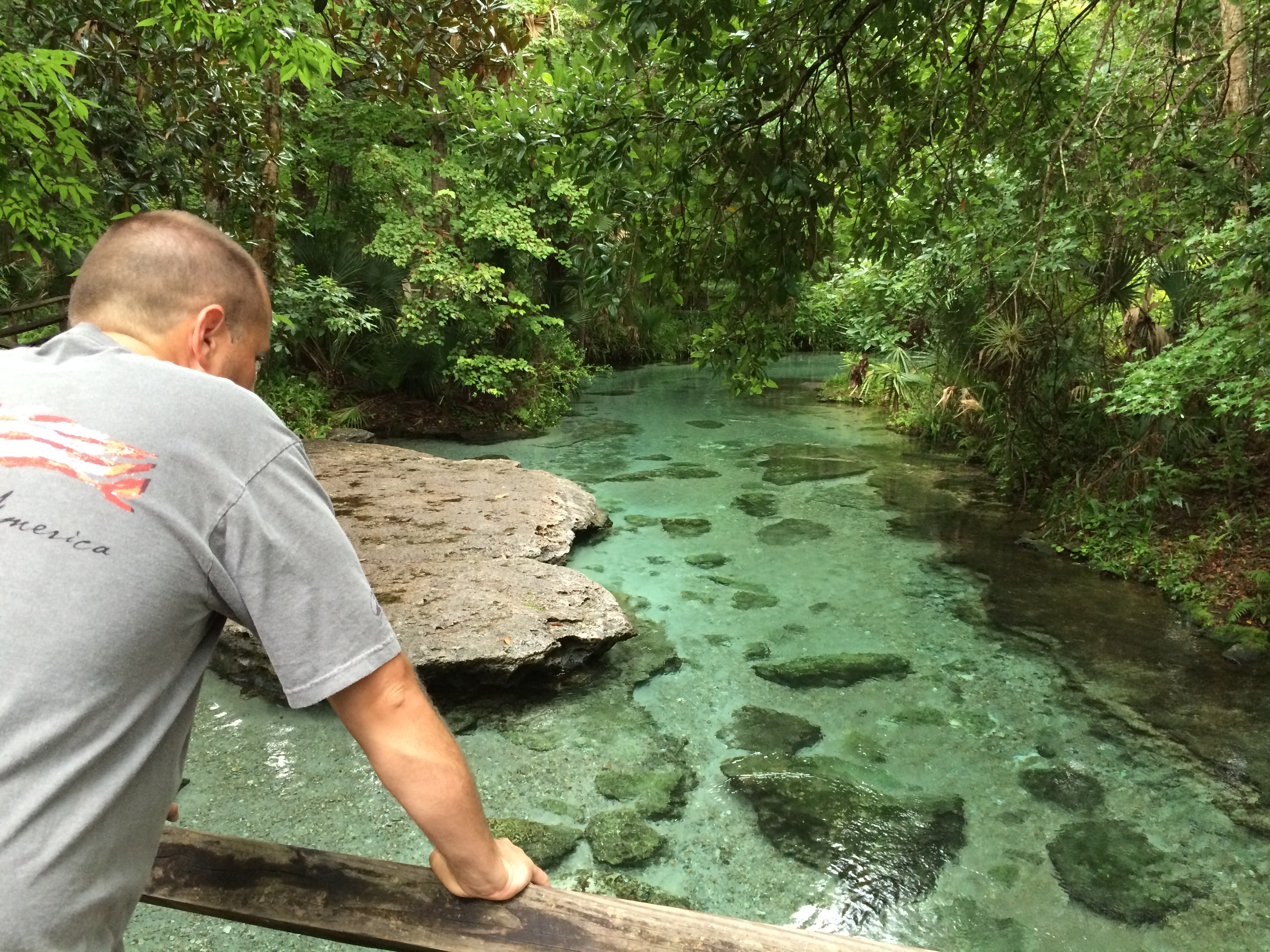 how to clean out a natural spring